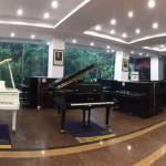从化精博音乐中心专业学钢琴