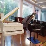 学钢琴的琴行从化哪有 街口钢琴班 基础班 速成班